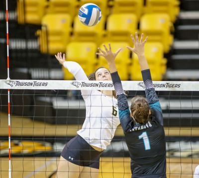 Willard grad helps fuel historic volleyball season at Towson