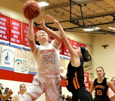 Lilli Taylor, basketball