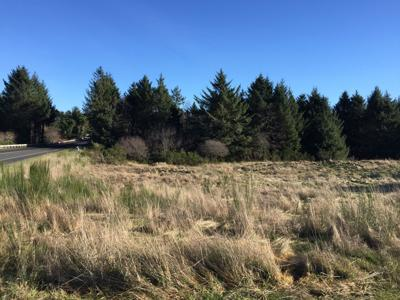 Highlands site