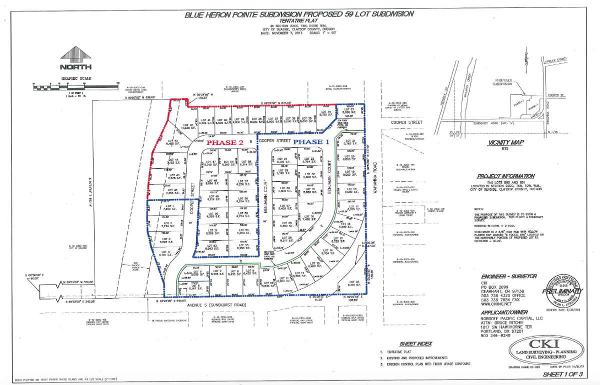 Seaside subdivision gets go-ahead