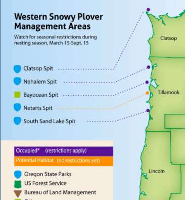 Western snowy plover management areas
