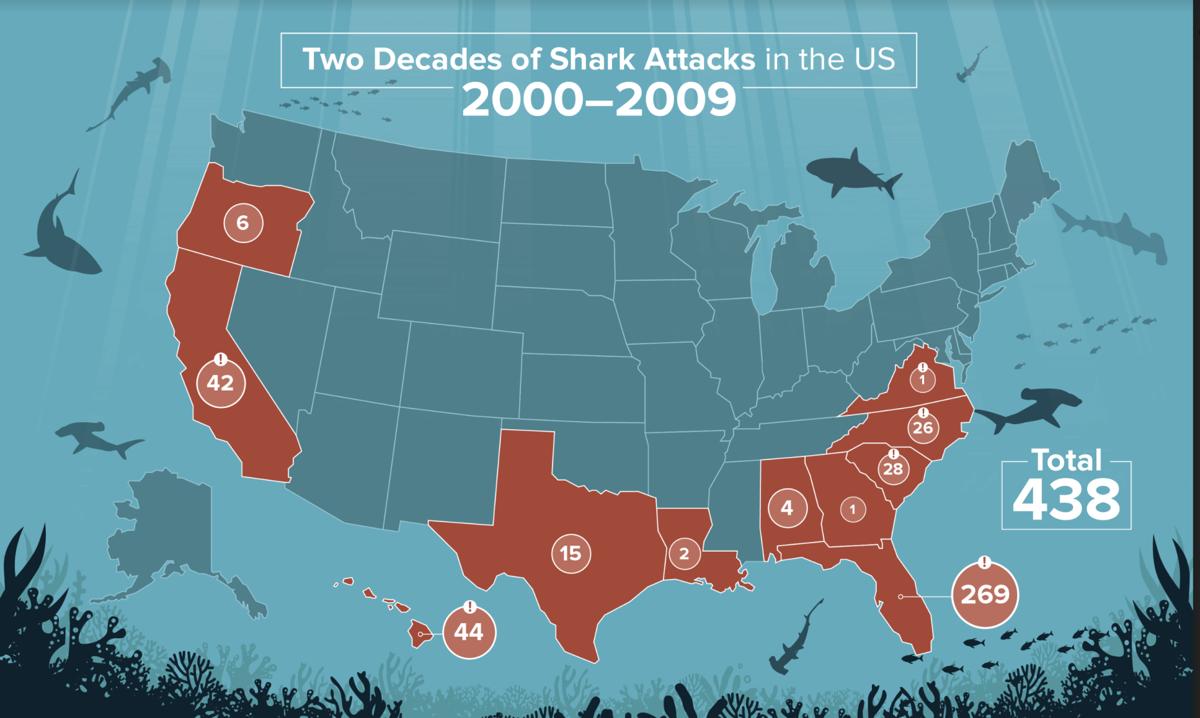 Shark attacks, 2000-2009