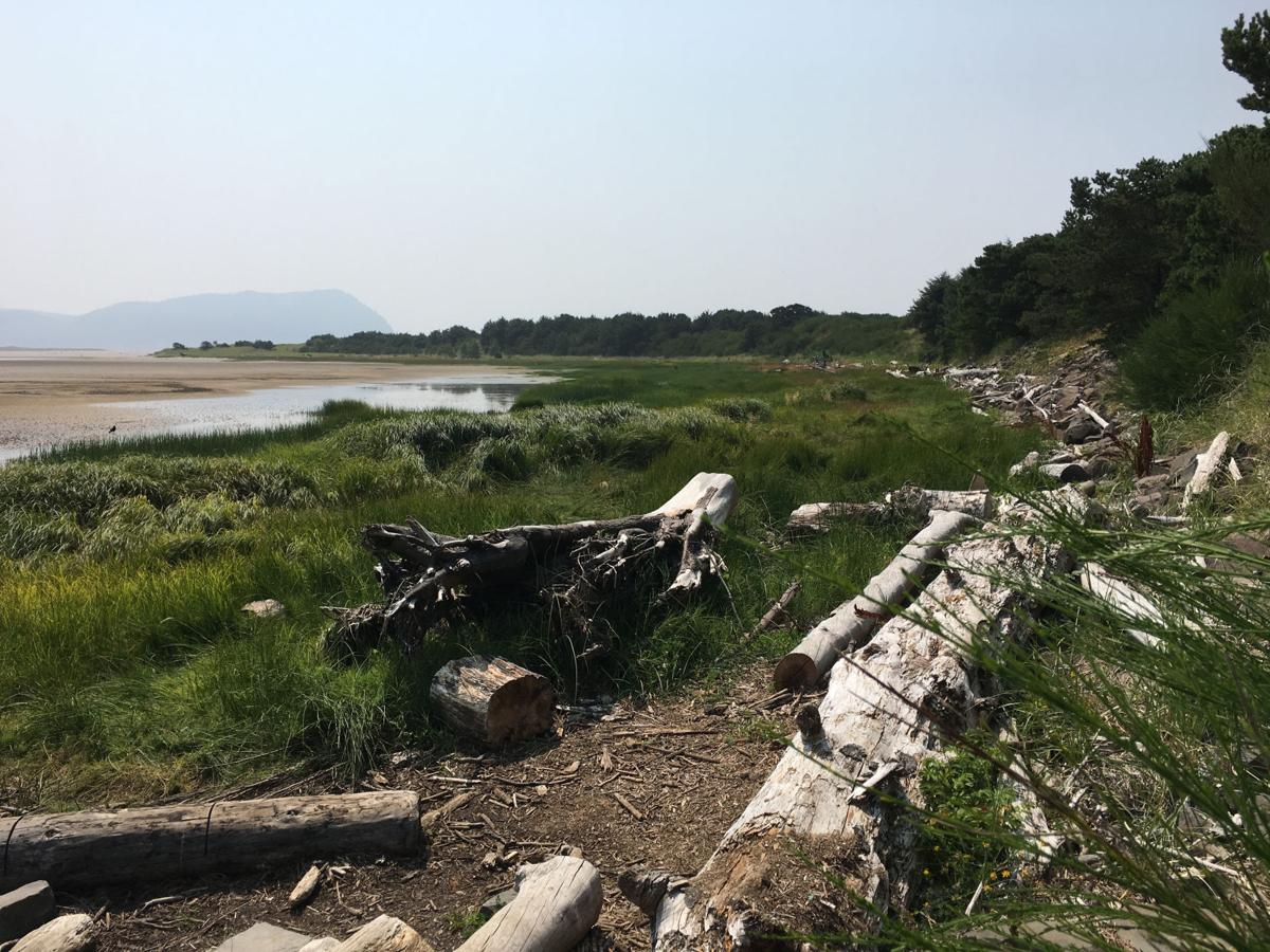 Gearhart to dive deep into the weeds