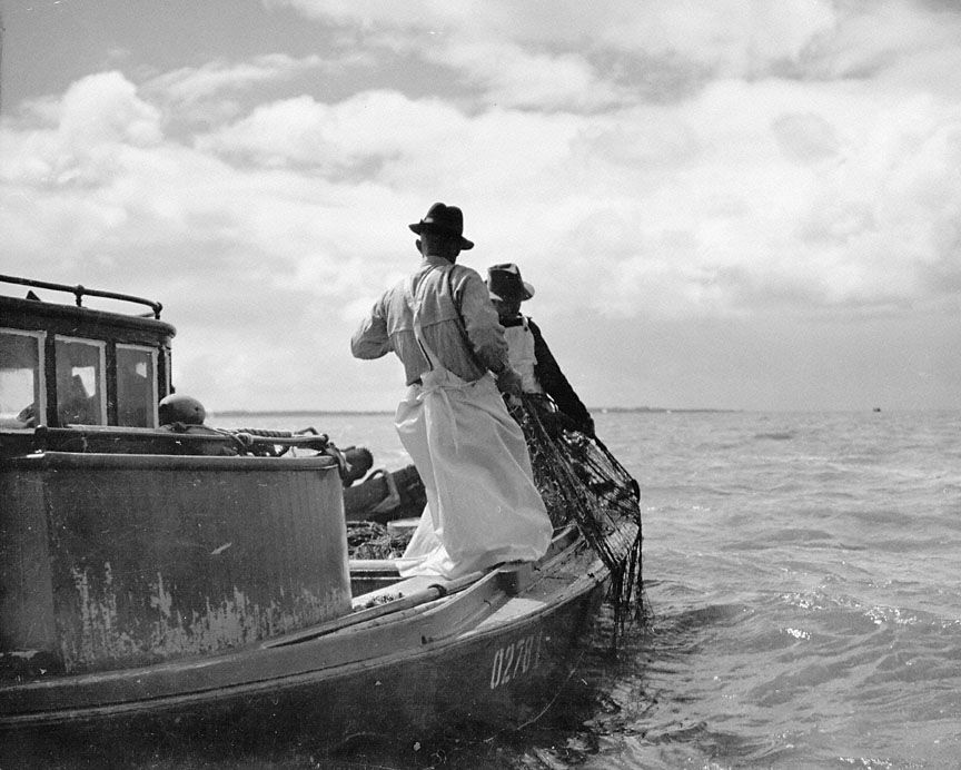 Gillnetting near Astoria, 1937
