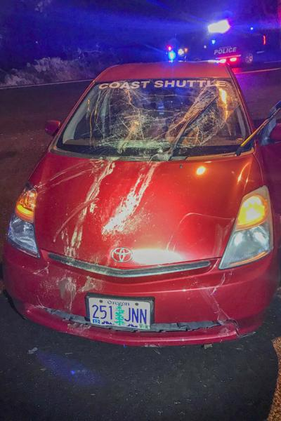 Elk damages car