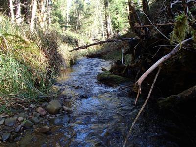 Conservancy gets funds for land purchase