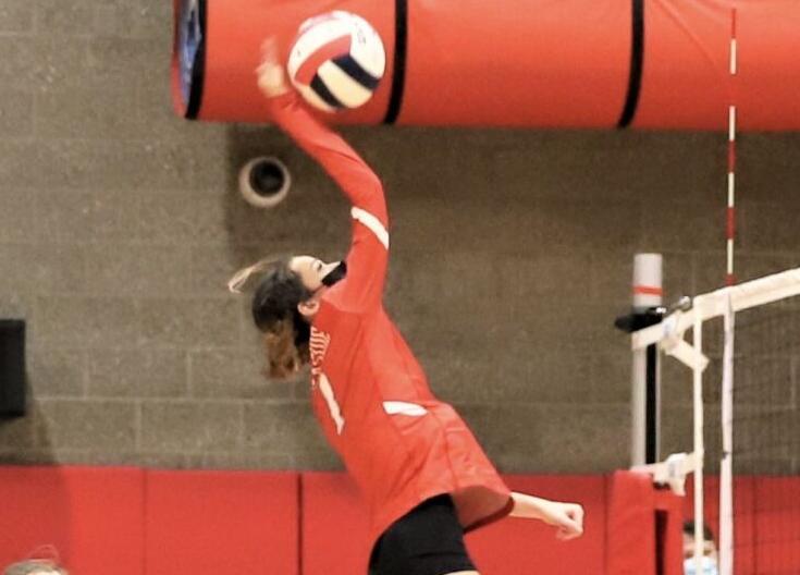 Landri Mickle, Seaside volleyball
