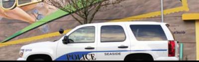 Seaside Police