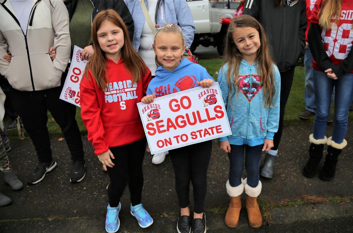 Gulls fall short in championship game