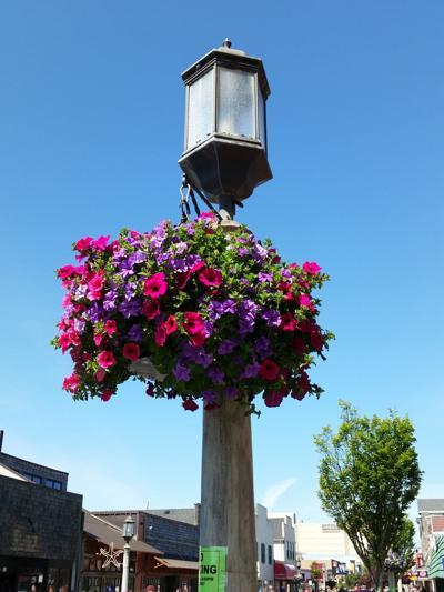 Flower baskets on Broadway