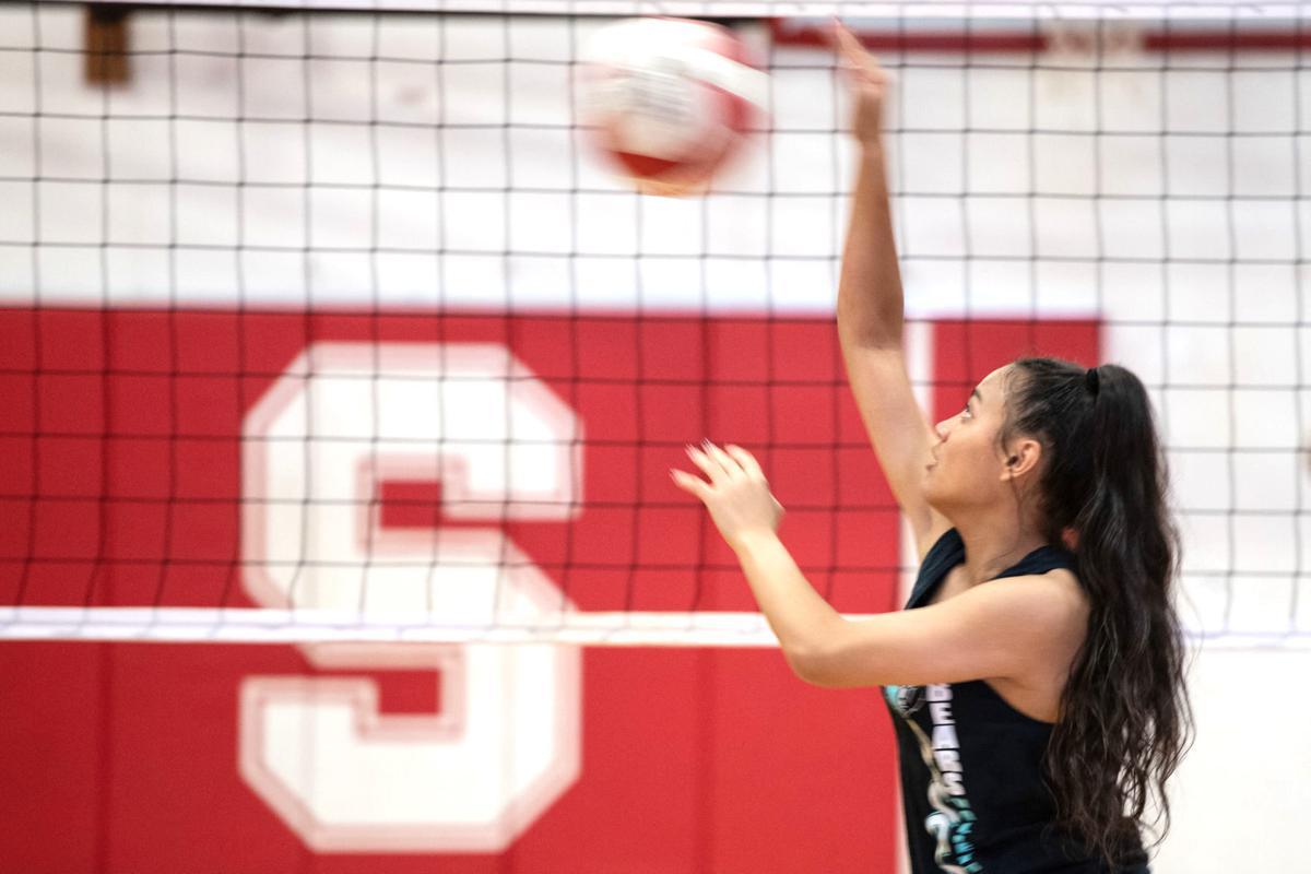 SHS Volleyball Hit