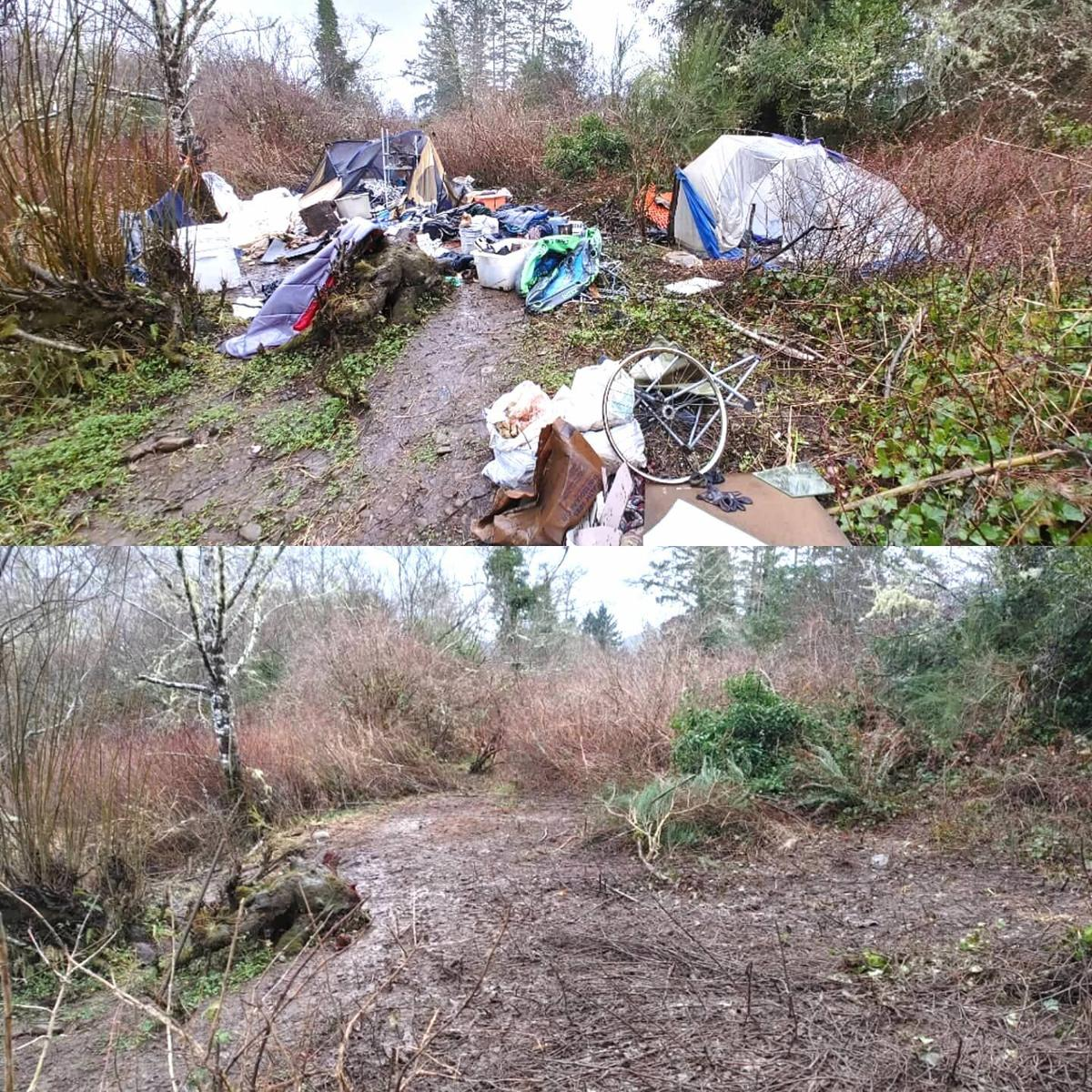 Before and after at the Mill Ponds