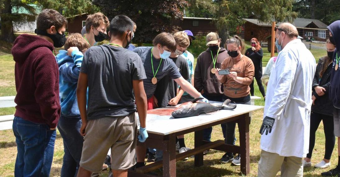 Nate Sandel leads Warrenton 8th graders through a salmon shark dissection.jpg