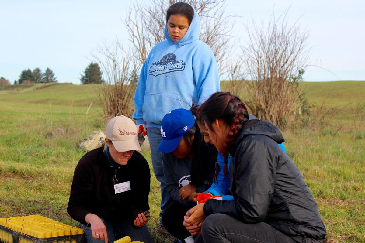 Violets return to Clatsop Plains