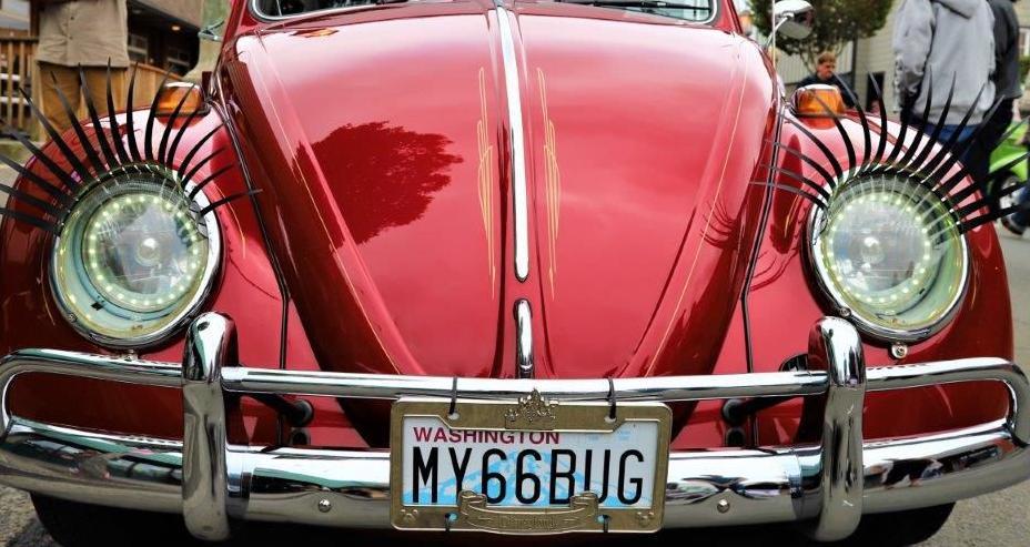 Classic Bug