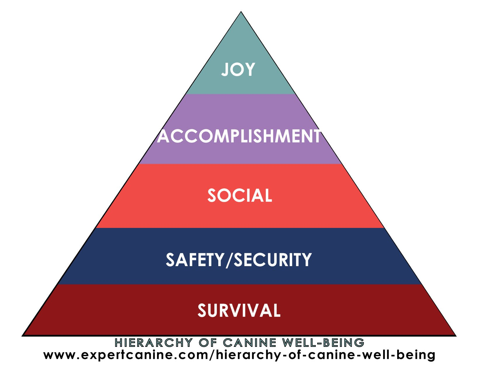 Hierarchy of canine well-being