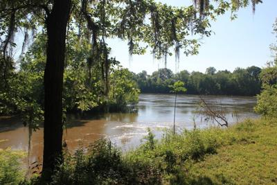 Cahawba river from park site