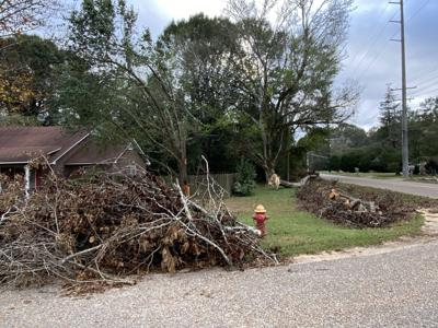 City talks hurricane debris cleanup costs