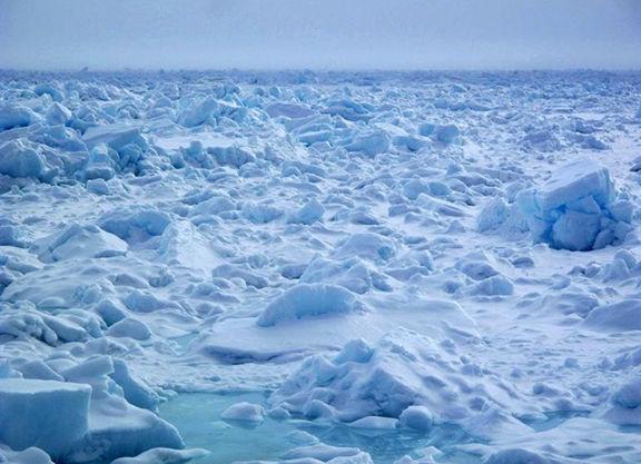 2. sea ice.jpg