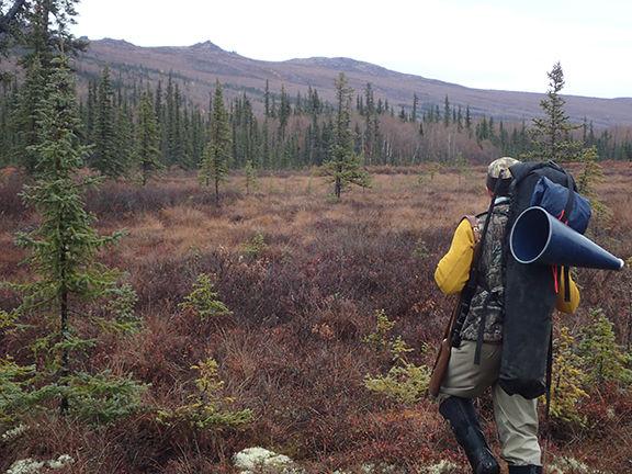 moose hunt.jpg