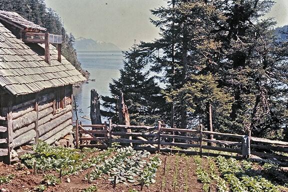 Davidson's cabin