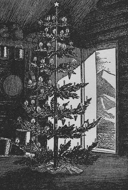 Fox Island Christmas Tree