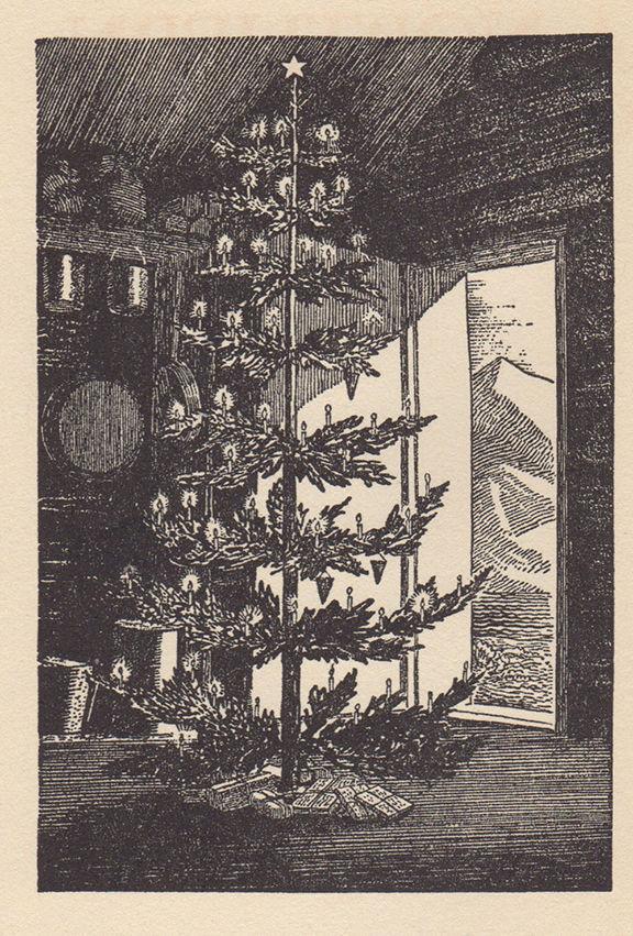 1. Fox Island Christmas Tree.jpg