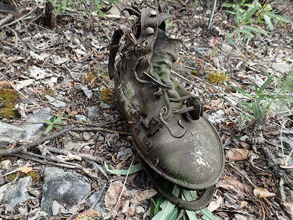Franklin boot.jpg