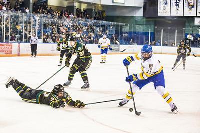 Steven Jandric hockey photo
