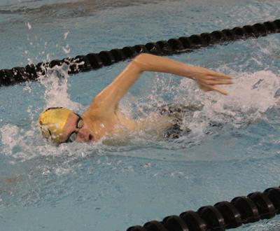 Shelbyville swimming photo