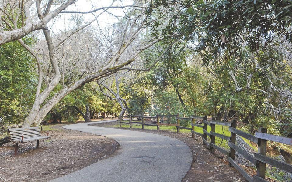 Belmont twin pines park