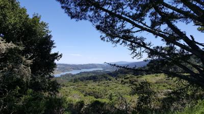 Fifield-Cahill Ridge Trail