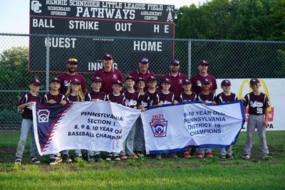 7-22 Minor baseball Section 1 champs