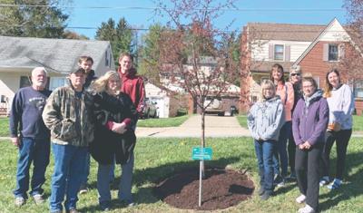 Tyler Mancuso memorial tree