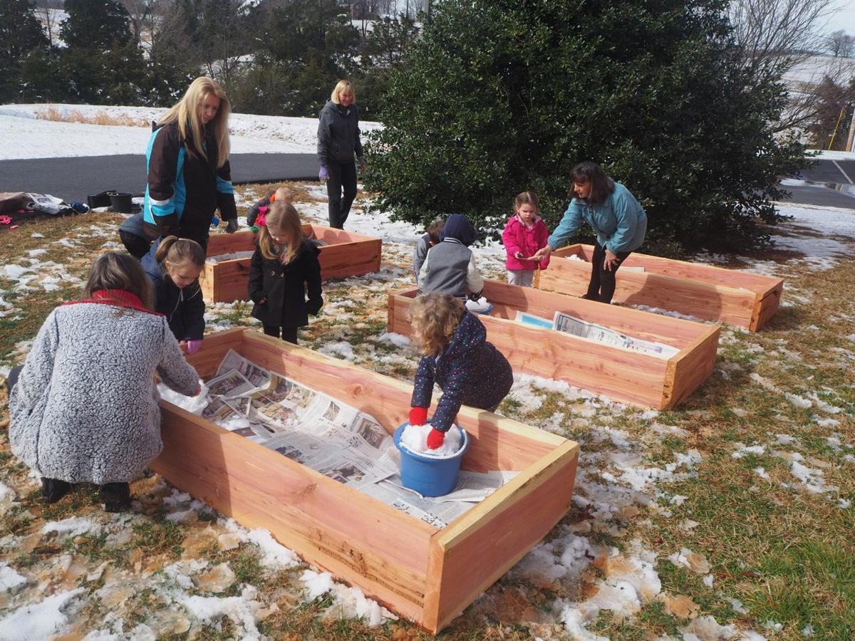 Preschoolers watch their gardens grow