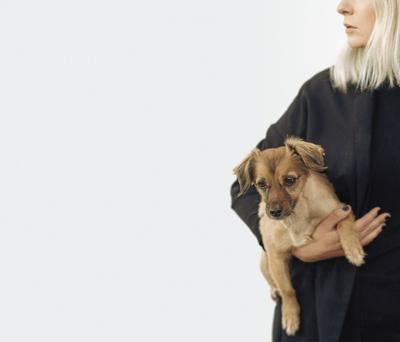 Pets - health