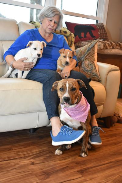 It took a village to save Mama and her pups