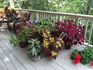 Bill Hickman's porch color scheme.