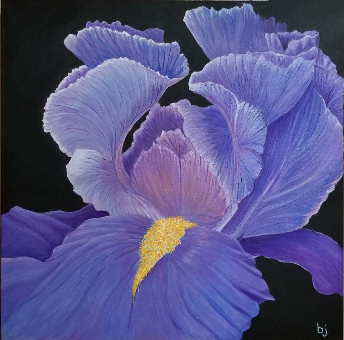 """Purple Iris"" by Barbara Jensen."
