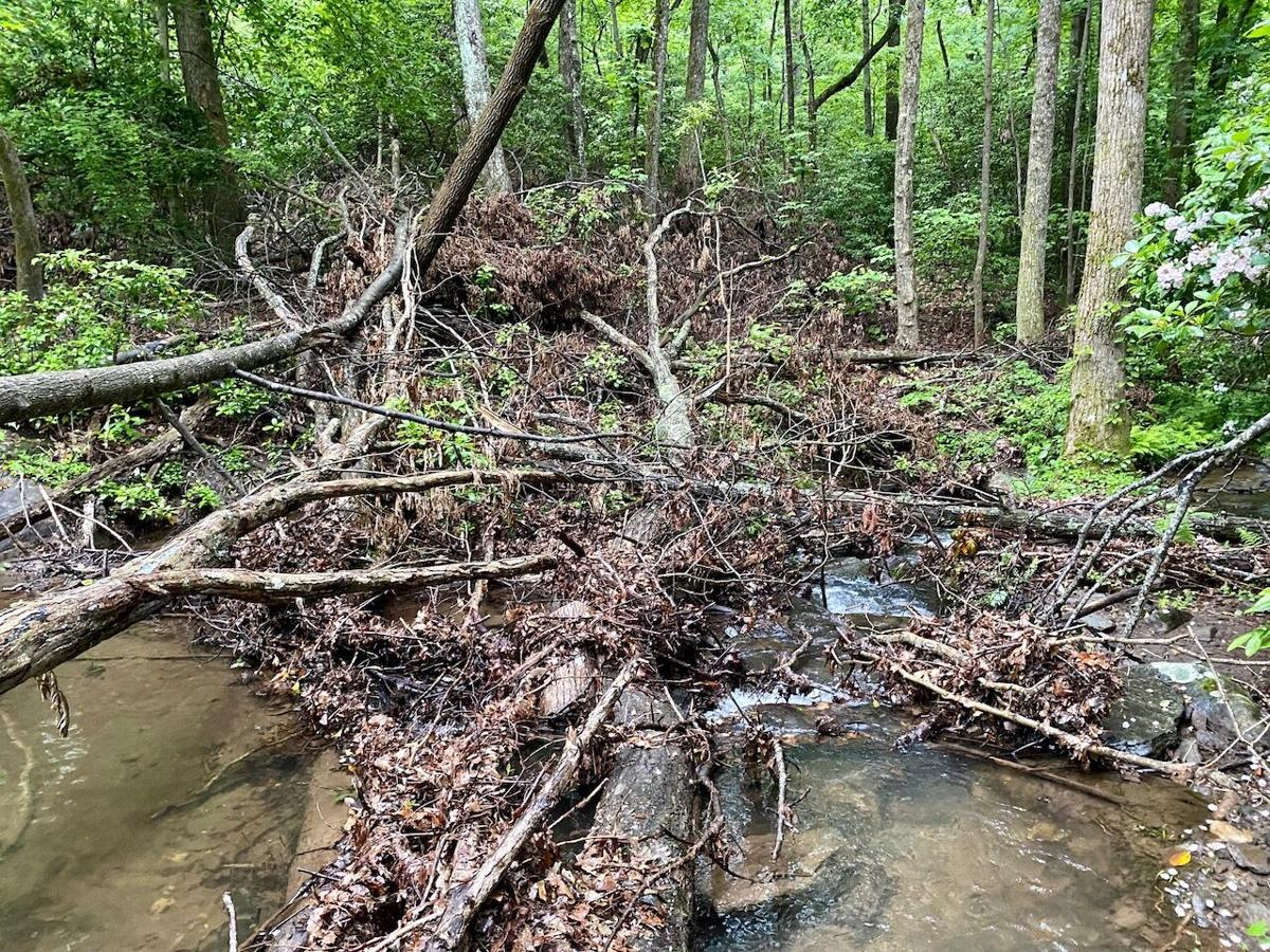 Confluence Point after the June 2019 storm.