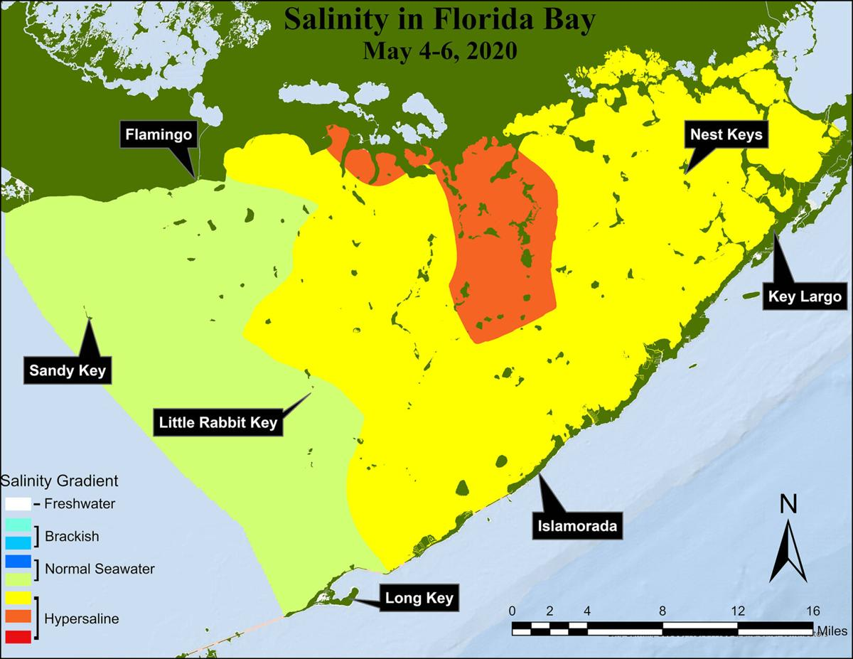 More than half of Florida Bay was experiencing hypersalinity, or salinity levels above normal seawater, at the beginning of the 2020 wet season.