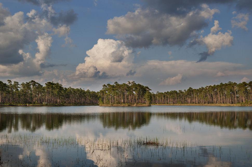 Long Pine Key Lake ENP