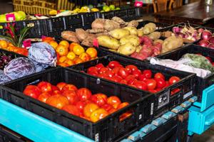An array of organic produce at the Redland Community Farm and Market