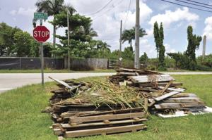 Dumping is prevelant anywhere you drive in the Redland.  Landscaping trash and pallets left on the corner of Mowry.