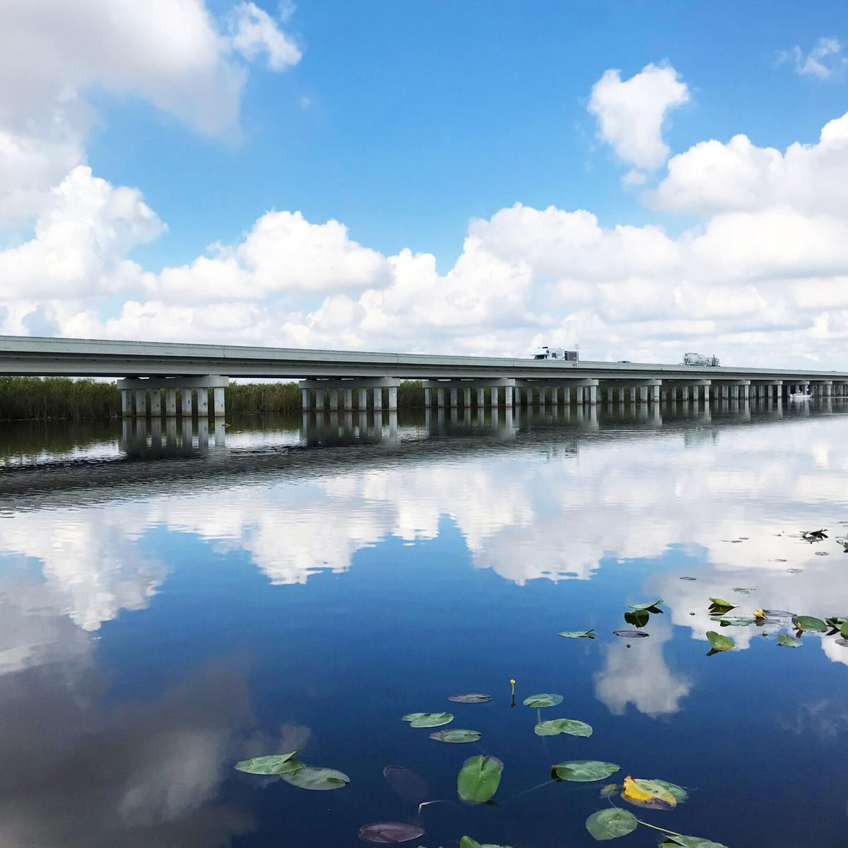 The one-mile bridge on Tamiami Trail was completed in 2013. This elevated portion of the roadway showed that it was possible to construct parts of the bridge to allow crucial water flow from the L-29 canal into the park.
