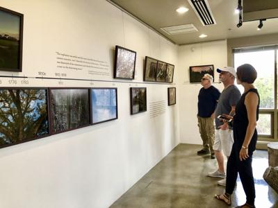Artists in Residence in Everglades (AIRIE) opened The Four Moments of the Sun: Hidden Lands of Florida's Maroon Communities, in the AIRIE Nest Gallery in Everglades National Park.