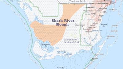 shark river slough