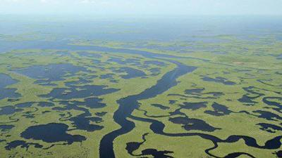 Aerial view of twisting mangrove rivers of Lane Bay area in the Marjory Stoneman Douglas Wilderness