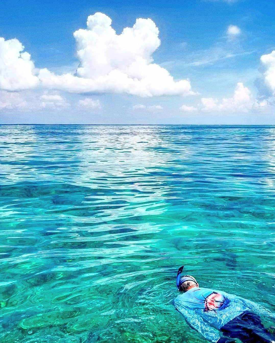 Steve Kronheim, snorkeling for lobsters