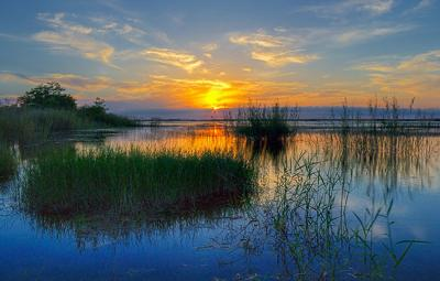 Continuing a moratorium will preserve and protect the beautiful waterways of the Everglades, as shown in this  photograph by renowed local Everglade photographer and Homestead Councilman Stephen Shelley.